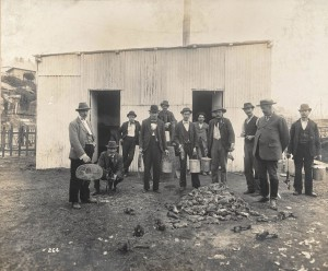 Rat catchers, 1900's (5)