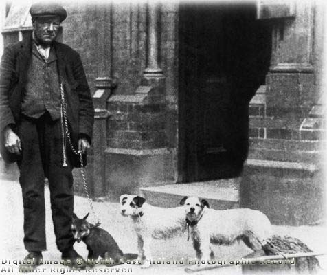 Taken from http://www.picturethepast.org.uk John Wheeldon, better known as John Gaunt. He lived at Sawmills but worked for the Midland Railway Company, travelling the lines as a ratcatcher. He is the only person known to have successfully trained foxes to 'rat' for economic use, and claimed they were better than terriers becaused they could hold five rats in their mouths at once. The ratcatcher had to be quick because, unlike a terrier, foxes did not kill the rats outright. His best two foxes, however, were killed accidentally by gamekeepers. Such was his national fame that he was described in a book as a 'great sportsman great Englishman'. He died , aged seventy three, at the home of a friend in Belper in November 1924, and was buried in Crich churchyard. He was also a prize-winning member of Ambergate Cottage Garden Society.