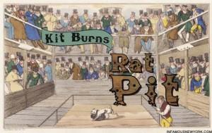 kit-burns-rat-pit-273-water-street